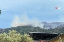 Aydın'da Başlayıp Muğla'ya Sıçrayan Orman Yangını Devam Ediyor