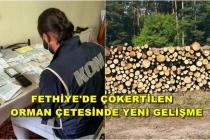 Kooperatif Başkanı, Orman İşletme Şefi ve Orman Muhafaza Memur Tutuklandı