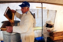 Muğla'da Çam Balı Üretiminde Rekolte Yüzde 90 Azaldı