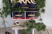 Muğla'da Uyuşturucu Tacirlerine Eş Zamanlı Operasyon !