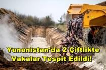 Mutasyona Uğramış Koronavirüslü Vizon Tehlikesi Türkiye Sınırına Dayandı!