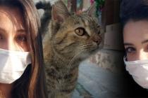 Marmaris'te 'Kediler Bir Anda Ortadan Kaybolmaya Başladı'