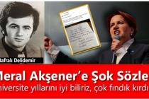 """Meral Akşener'e Şok Sözler; """"Üniversite Yıllarını İyi Biliriz, Çok Fındık Kırdın"""""""