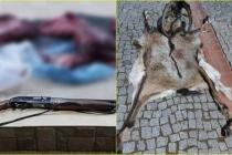 Milas'ta Kaçak Avcı Yaban Keçisini Vurup Derisini Yüzdü!