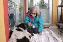 Fethiye'de Sokak Köpeğinin Sopayla Dövüldüğü İddia Edildi