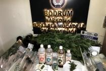 Bodrum'da Baskın Yapılan Ev, Uyuşturucu Tarlası Çıktı