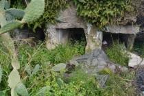Bodrum'da Roma Dönemine Ait Kaya Mezarları Turizme Kazandırılıyor