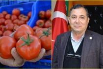 Muğla'da Domates Üreticisi Kotanın Kaldırılmasını İstiyor