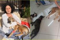 Datça'da Yaşayan Funda Üner, Köpeklerini Zehirleyeni Bulana 10 Bin TL Ödül Verecek