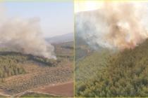 Bir Orman Yangını da Milas'ta Meydana Geldi!