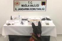 Bodrum'daki Bir Evde Yapılan Aramada Uyuşturucu ve Silah Ele Geçirildi