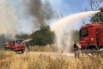 Dalaman Açık Cezaevi Çevresi ve TİGEM Arazilerinde Yangın