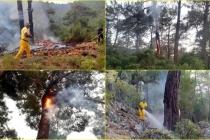Muğla'da 12 Günde 48 Yıldırım Yangını Meydana Geldi!