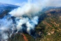 Yangın Kabusu Geri Döndü! Köyceğiz'de Orman Yangını Başladı