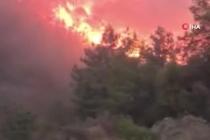 Dalaman Sırmadere Yangını Kontrol Altına Alındı