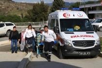 Milas'da Arkadaşını Domuz Sanıp Vurdu