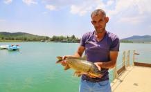 Ula Göleti'ne Bırakılan Sazanların Boyu 50 Santimetreye Ulaştı