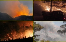 Türkiye Yanıyor! Antalya'dan Sonra 5 Şehirde Daha Yangın Çıktı