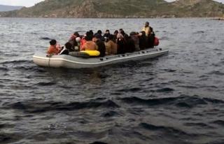 Bodrum'da 31 Düzensiz Göçmen Yakalandı
