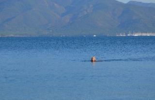 Kış Ortasında Marmaris'te Deniz Keyfi!
