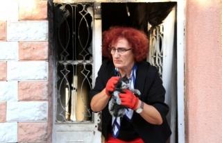 Milas'da Yanan Evde Bulunan Kediler Korumaya...