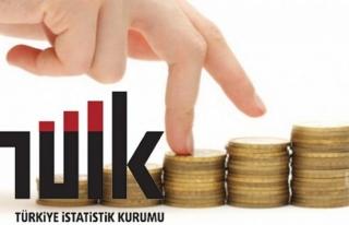 Muğla Kişi Başı Gelirde Türkiye Ortalamasının...