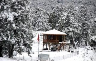 Muğla'nın Yüksek Kesimleri Kar Altında