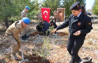 MENTEŞE'DE ŞEHİTLER ORMANI'NA JANDARMA EKİPLERİ...