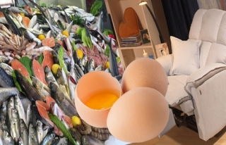 Mobilya, Yumurta ve Su Ürünlerinde KDV İndirimi!