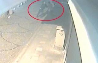 Alkollü Genç Kavga Etti Önce Dağıttı Sonra Topladı