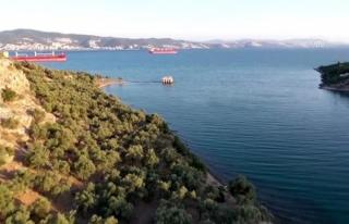 Muğla'nın Liman Kenti İasos Ziyaretçilerini...
