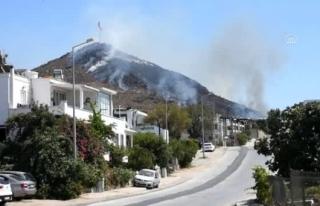 Bodrum'da, Bayrak Tepesi'nde Yangın Çıktı!