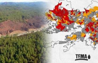 TEMA'dan Korkunç Rapor: Muğla'nın Yüzde...