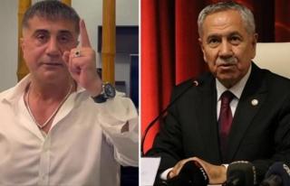 """Arınç'tan Sedat Peker Çıkışı: """"Şanlı..."""