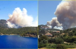 Milas'ta Çıkan Orman Yangınına Yoğun Müdahale...