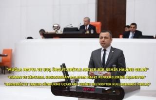 CHP'li Erbay; Muğla'da Yanan Alanların Ranta...