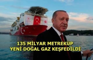 Cumhurbaşkanı Erdoğan'ın Doğal Gaz Müjdesi...