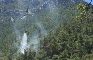 Datça'da Çıkan Orman Yangınında 3 Dekarlık...