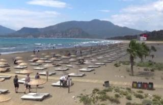 İztuzu Plajı'ndaki Caretta Caretta Yuva Sayısı...