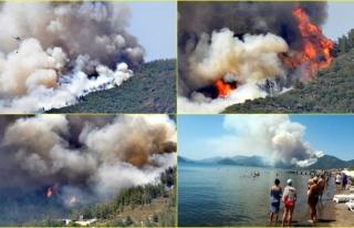 Marmaris'te Orman Yangını! Alevler Bir Anda...