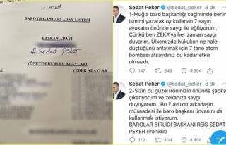 Sedat Peker, Kendisine 7 Oy Çıkan Muğla Barosu...