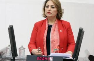 CHP'li Şevkin: Türkiye'nin Enerji Güvenliği...