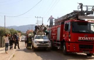 Fethiye'deki Elektrik Akımına Kapılan İşçi...