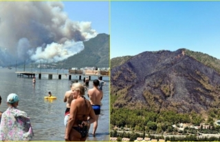 Marmaris'teki Orman Yangını Enerji Nakil Hatlarından...