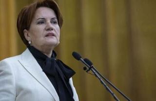 Meral Akşener, Elmalı Davasıyla İlgili Konuştu:...
