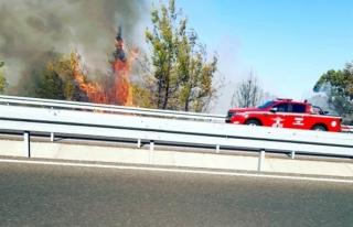 Ortaca'da Ormanlık Alanda Çıkan Yangın Kontrol...