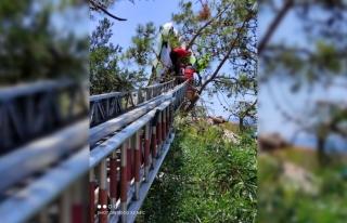 Yamaç Paraşütçüleri Ağaçta Asılı Kaldı İtfaiye...