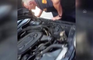 Yatağan'daki Otomobilin Motoruna Giren Yılan...