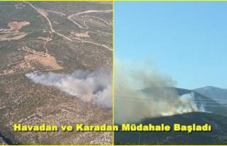 İzmir'de İki Ayrı Bölgede Orman Yangını!