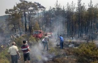 Kavaklıdere'de İkinci Yangın Önlendi